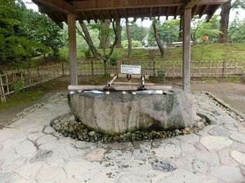 毛越寺3.JPG