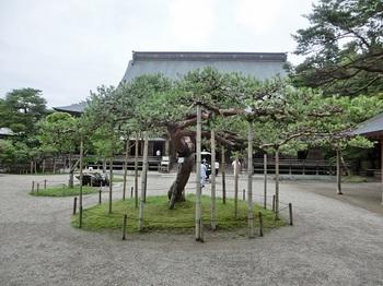 中尊寺29.JPG